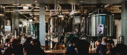 Photo for: Why Brewpubs & Microbreweries Are Brewing up a Storm