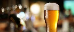 Photo for: Sustainable and Environmental – What Does the Future Look Like for Beers?